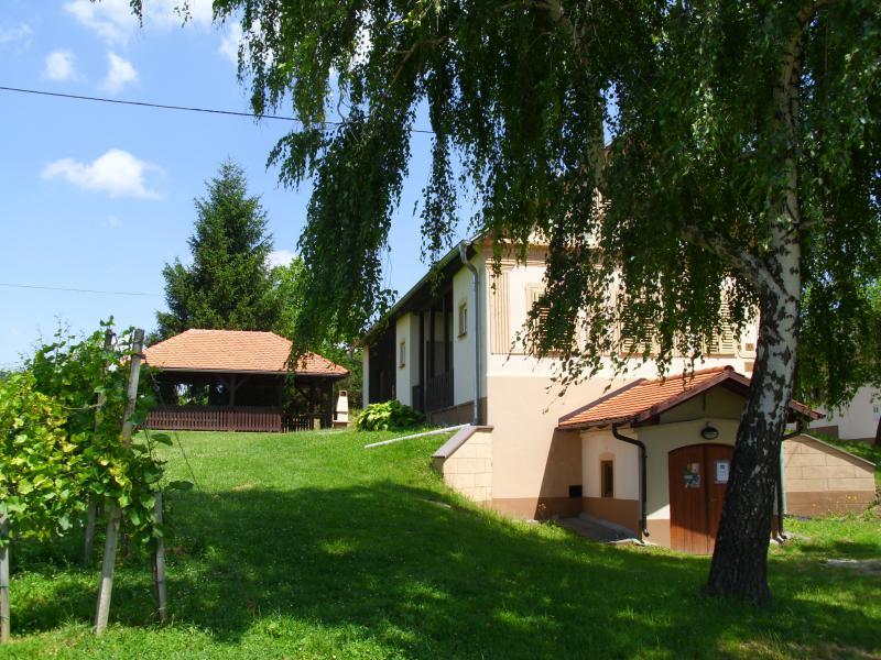 vinograd u kuća za odmor u Gradiščaku